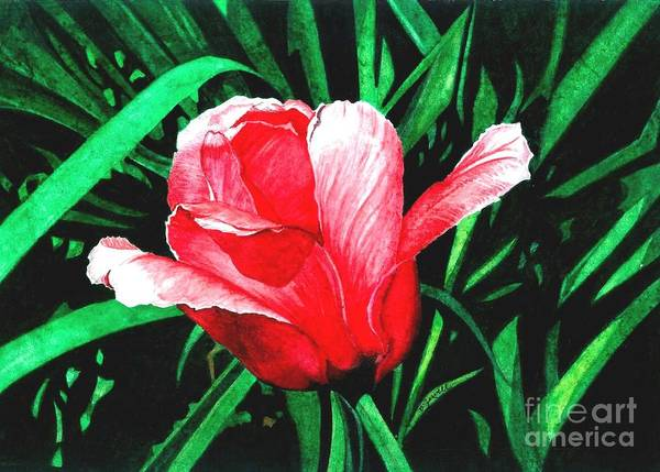 Wall Art - Painting - Spring Solo by Barbara Jewell