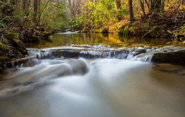 Photograph - Spring Stream by Parker Cunningham