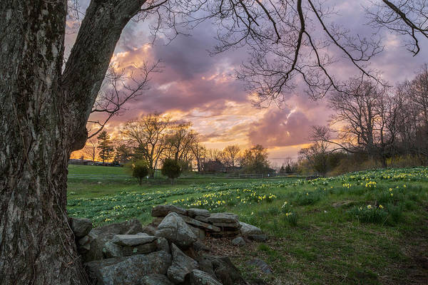 Photograph - Spring Sunset by Bill Wakeley