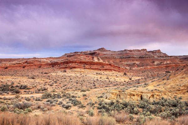 Purple Sage Photograph - Spring Sunset In The San Rafael Swell. by Johnny Adolphson