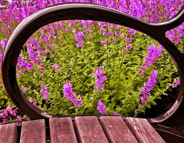 Photograph - Spring Through The Eye Of A Bench by Gary Slawsky
