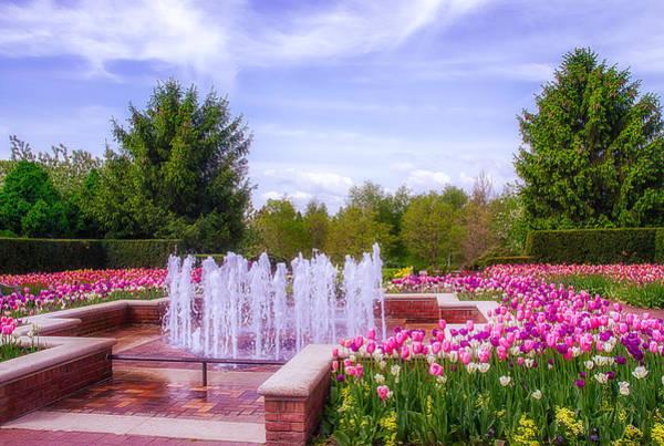 Chicago Botanic Garden Photograph - Spring Tulip Garden by Julie Palencia