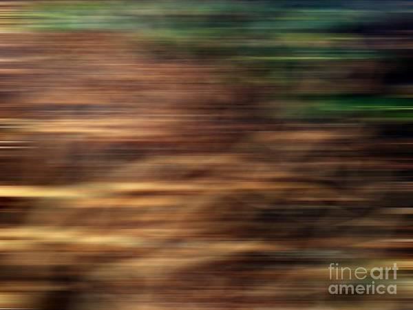 Digital Art - Spring Wind by Fei A