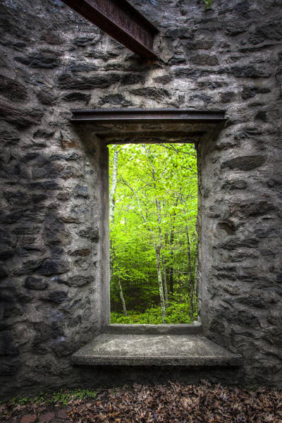 Photograph - Spring Within Cunningham Tower by Gary Heller