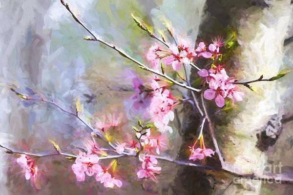 Spring's Awaited Color Art Print