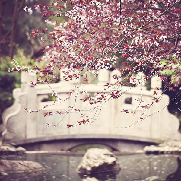 Wall Art - Photograph - Springtime Bridge by Melanie Alexandra Price