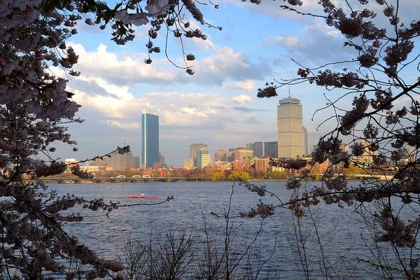 Photograph - Springtime In Boston by Toby McGuire