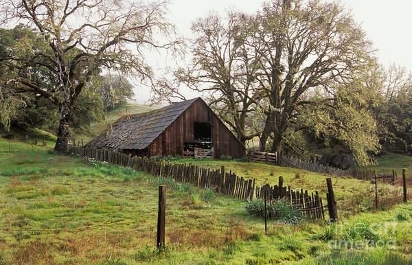 Photograph - Springtime In Mendocino County Ca by Ron Sanford