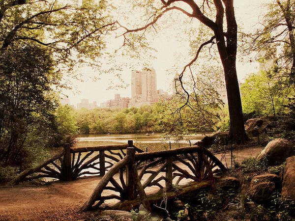 Photograph - Springtime In The Park by Jessica Jenney