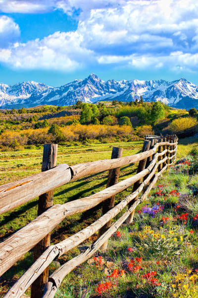 Springtime In The Rockies Art Print