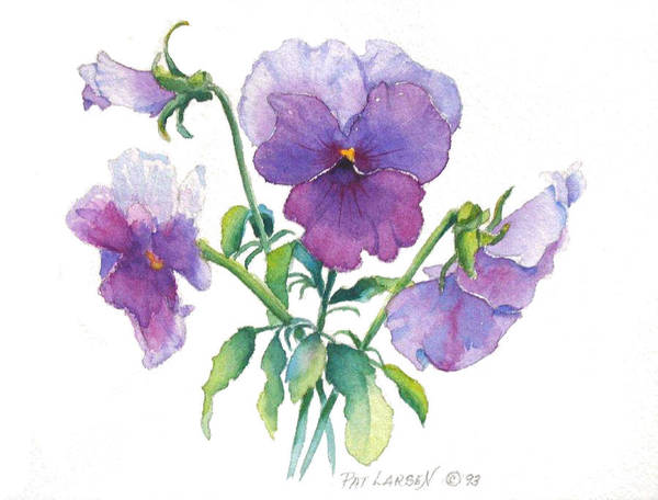 Wall Art - Painting - Springtime Pansy by Pat Yager