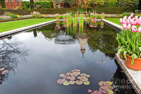 Woodside Photograph - Springtime Reflections by Kate Brown