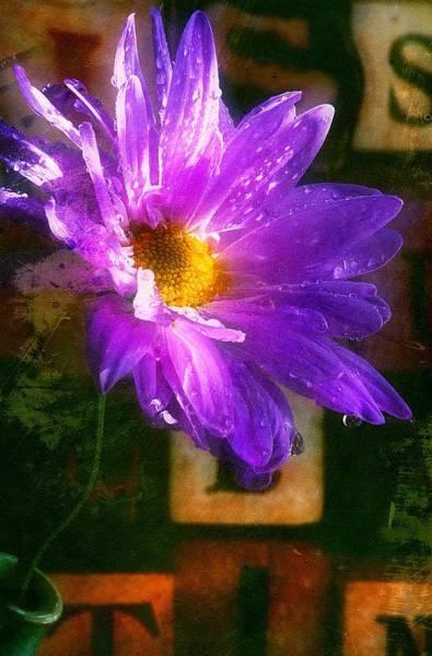 Photograph - Springy... by Arthur Miller