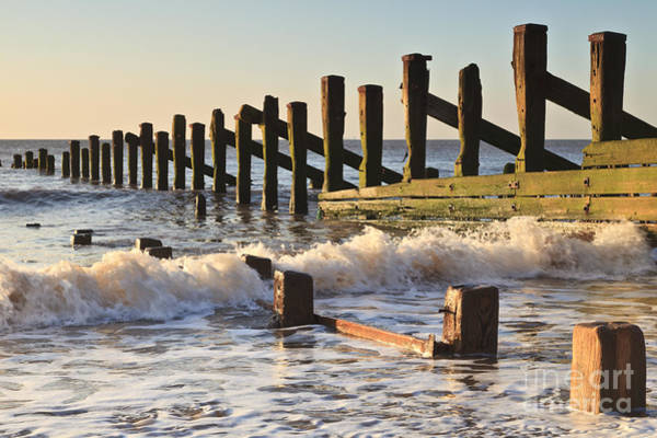 Wall Art - Photograph - Spurn Point Sea Defence Posts by Colin and Linda McKie