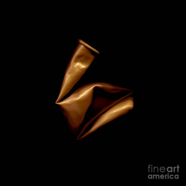 Photograph - Square Bronze Balloon by Julian Cook
