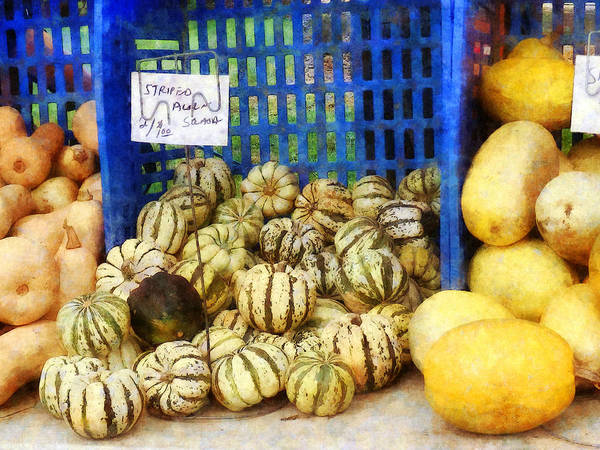 Acorn Squash Photograph - Squash At Farmer's Market by Susan Savad
