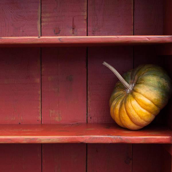Fall Photograph - Squash by Elizabeth Gray