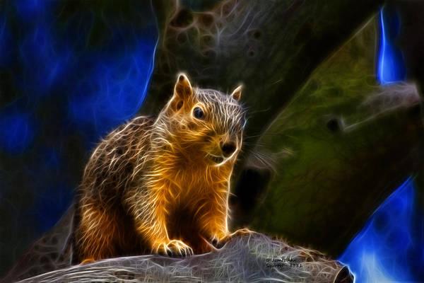 Digital Art - Squirrel 8381 - F by James Ahn