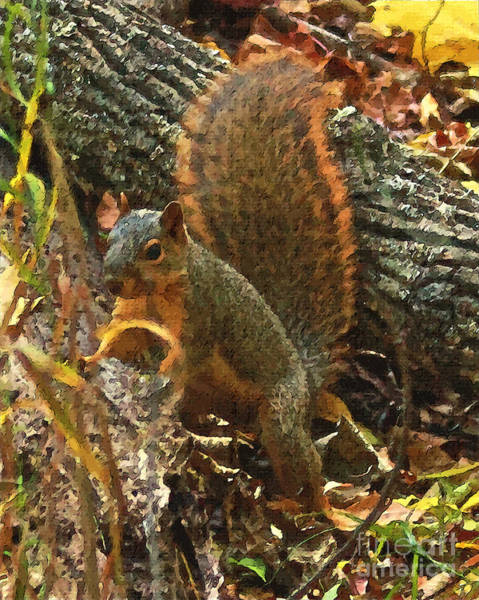 Wall Art - Digital Art - Squirrel In The Woods by Mike Flake