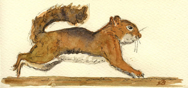 Chipmunk Wall Art - Painting - Squirrel by Juan  Bosco