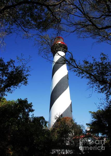 Photograph - St Augustine Lighthouse by Mel Steinhauer