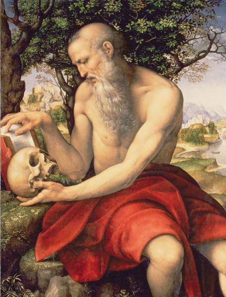 Elderly Wall Art - Painting - St. Jerome by Cesare da Sesto