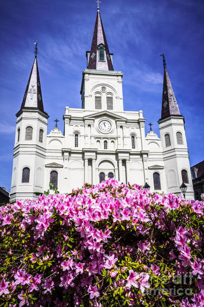 Basilica Photograph - St. Louis Cathedral And Flowers In New Orleans by Paul Velgos