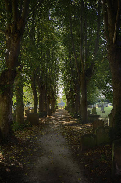 Photograph - St. Nicholas Churchyard by Dan McManus
