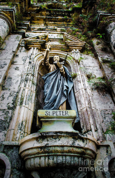 Photograph - Saint Peter by Michael Arend