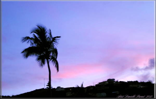 Photograph - St-thomas Virgin Island Sunset 3 by Danielle  Parent