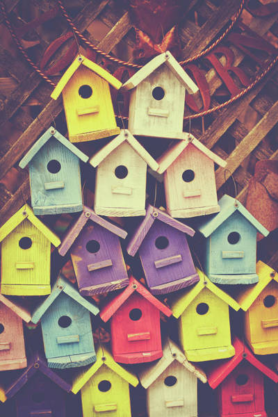 Photograph - Stack Of Birdhouses by Julia Goss