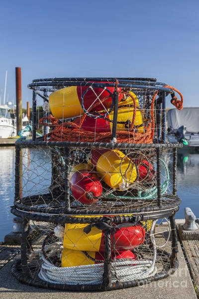 Photograph - Stack Of Crab Pots by Bryan Mullennix