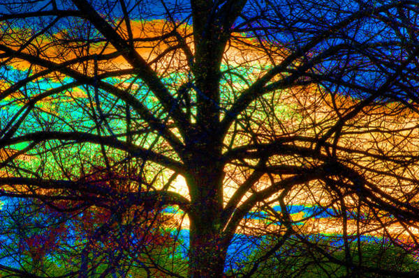 Stained Glass Tree Art Print