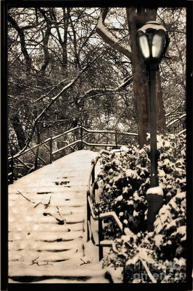 Wall Art - Photograph - Stairway In Central Park On A Stormy Day by Madeline Ellis