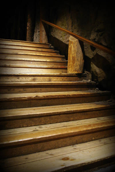 Royal Oak Photograph - Stairway  by Marilyn Wilson