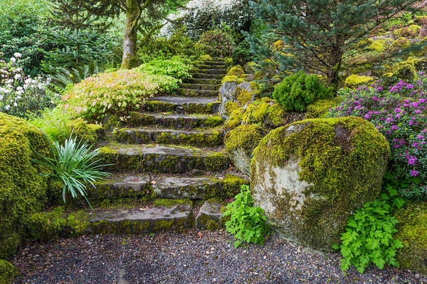 Art Print featuring the photograph Stairway To The Secret Garden by Priya Ghose