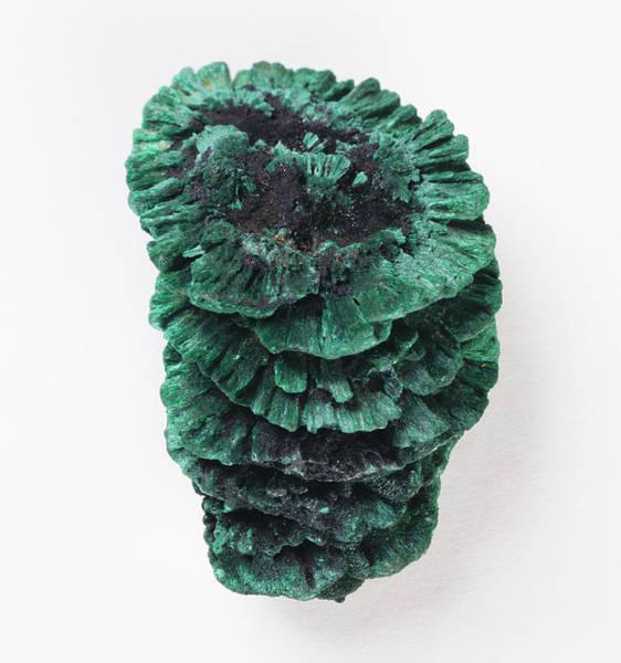 Carbonate Photograph - Stalactitic Habit Of Malachite by Dorling Kindersley/uig