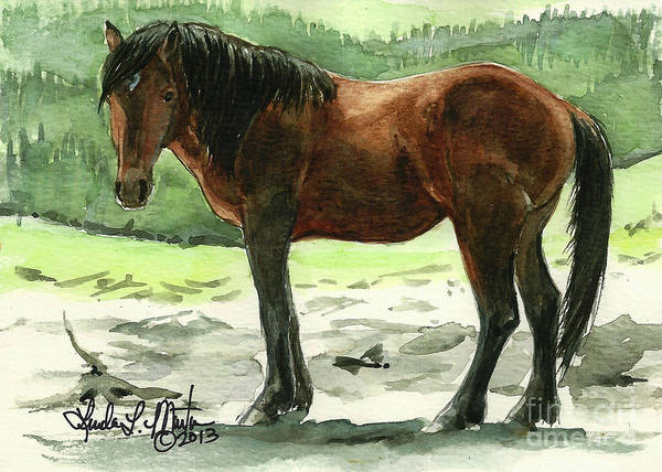 Saving Painting - Stallion Of The Clear-cut by Linda L Martin