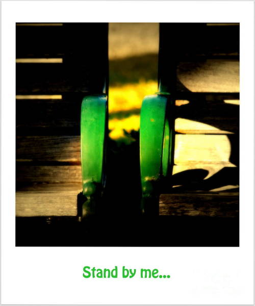Photograph - Stand By Me... by Susanne Van Hulst