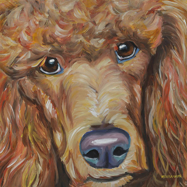 Poodle Wall Art - Painting - Standard Poodle by Melissa Smith