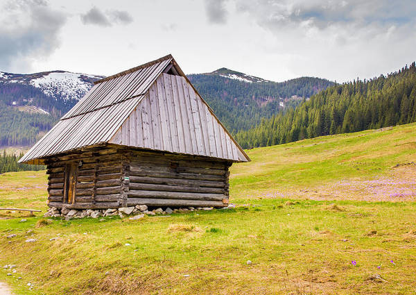 High Tatras Wall Art - Photograph - Standing Alone by Pati Photography