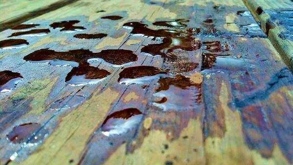 Photograph - Standing Drops by Tyson Kinnison