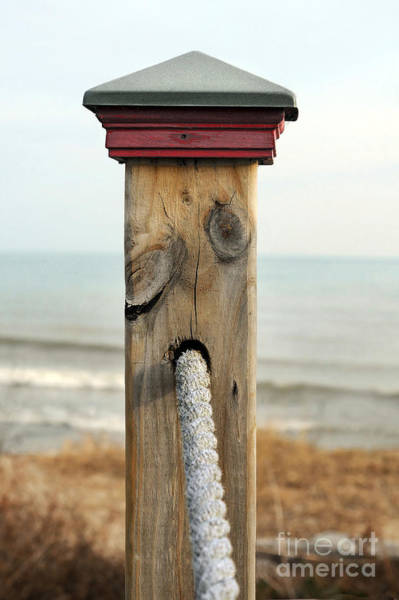 Fence Post Photograph - Standing Guard by Dan Holm