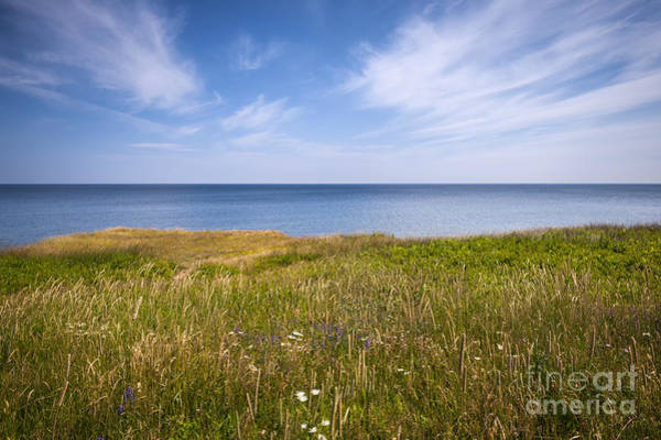 Photograph - Standing On Cliff Edge by Elena Elisseeva