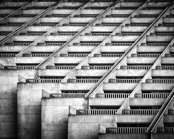 Repetition Wall Art - Photograph - Standing Out by Gary E. Karcz