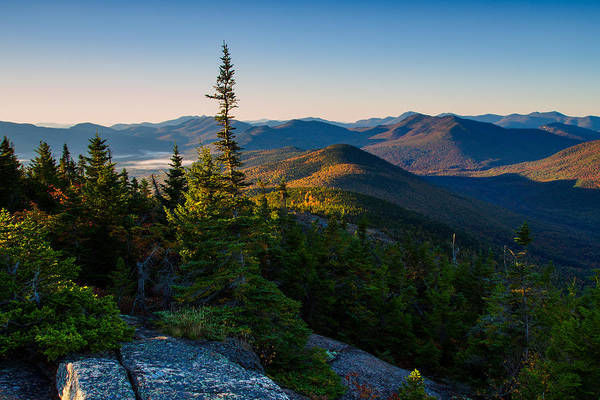 Photograph - Standing Tall On Mt. Crawford by Jeff Sinon