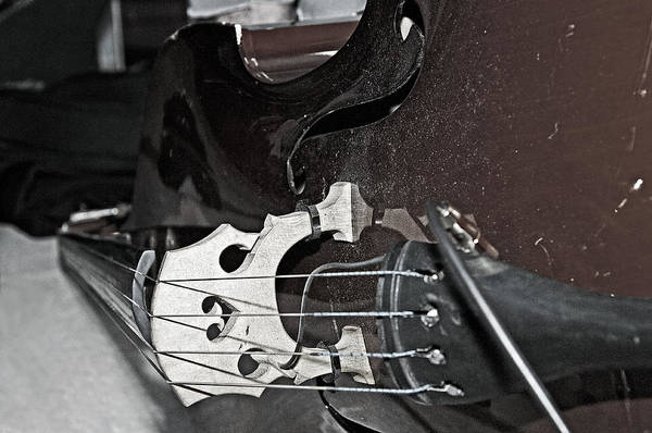 Photograph - Standup Bass At Rest by Andy Crawford