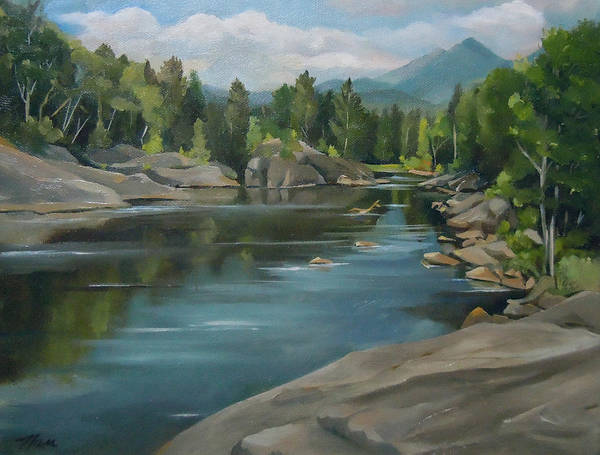 Painting - Staples Park In Thornton New Hampshire by Nancy Griswold