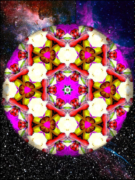 Digital Art - Star Child Mandala by Karen Buford
