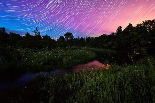 Wall Art - Photograph - Star Lines And Fireflies by Matt Molloy